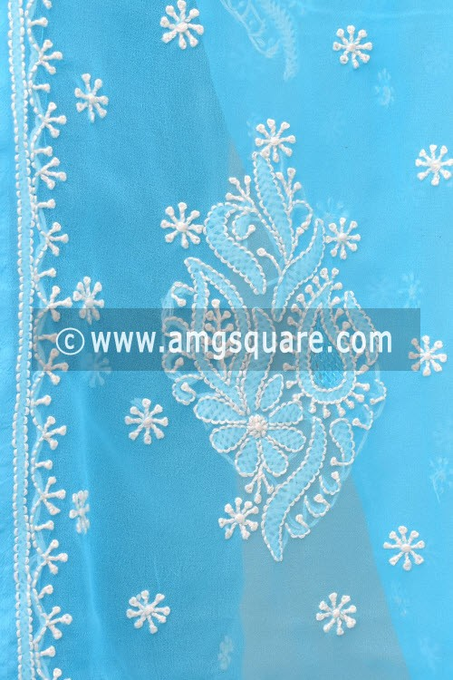 Pherozi Blue Hand Embroidered Lucknowi Chikankari Saree (With Blouse - Georgette) 14993