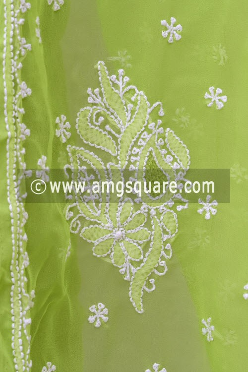 Pista Green Hand Embroidered Lucknowi Chikankari Saree (With Blouse - Georgette) 14997