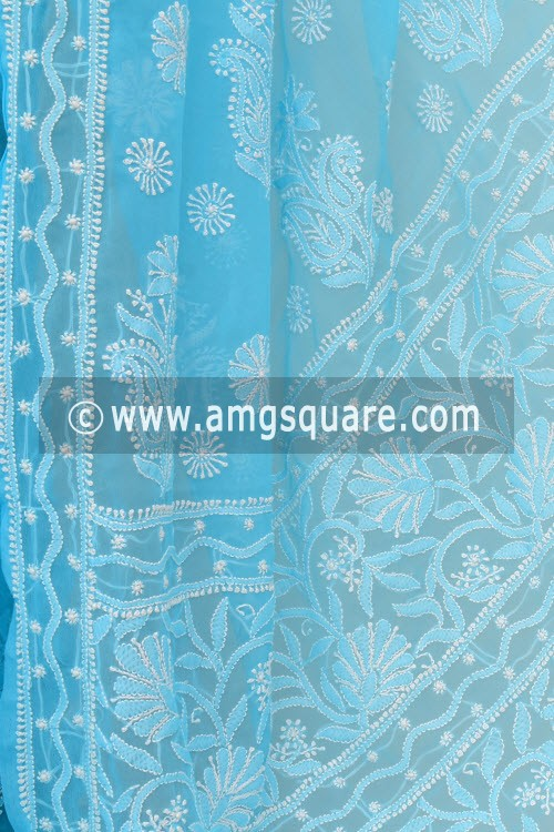 Pherozi Blue Hand Embroidered Lucknowi Chikankari Saree (With Blouse - Georgette) 15003