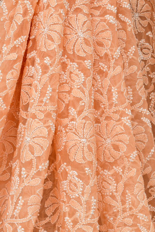 Light Orange Allover Hand Embroidered Lucknowi Chikankari Saree (With Blouse - Georgette) 15040
