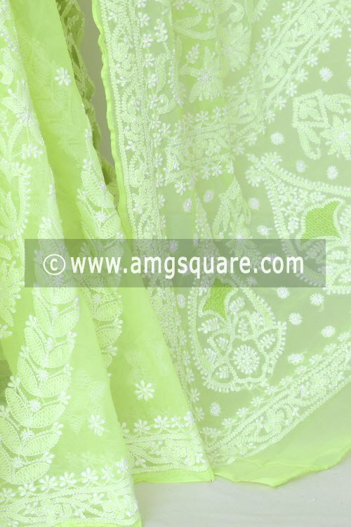 Fluorescent Green Hand Embroidered Lucknowi Chikankari Saree (With Blouse - Georgette) Rich Pallu & Border 17314