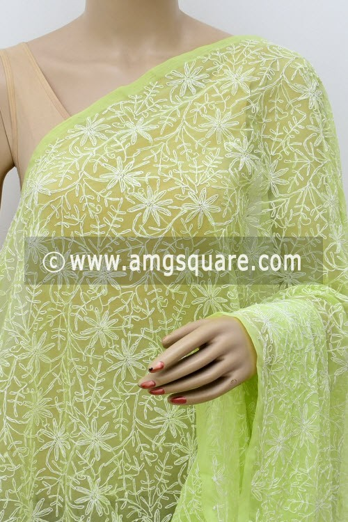 Pista Green Embroidered Allover Tepchi Work Lucknowi Chikankari Dupatta (Georgette) 17970