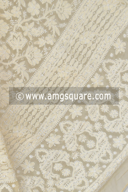 Fawn Hand Embroidered Lucknowi Chikankari Saree (With Blouse - Georgette) Rich Pallu 14466
