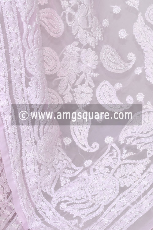 Baby Pink Designer Hand Embroidered Lucknowi Chikankari Saree (With Blouse - Georgette) 14605