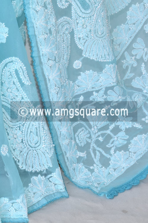 Pherozi Blue Designer Hand Embroidered Lucknowi Chikankari Saree (With Blouse - Georgette) 14604
